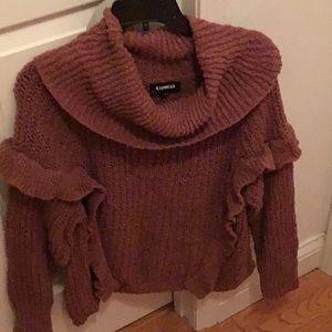 Express mauve sweater